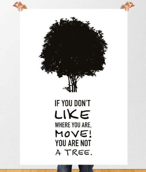 if you don't like where you are move you are not a tree