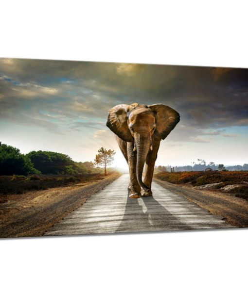 31275-Canvas-75×100-Elephant